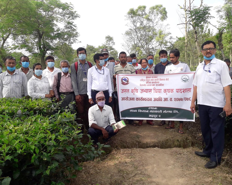 Good Agriculture Practice Tea Farmers' Field School